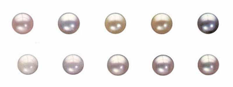 Tipos perlas